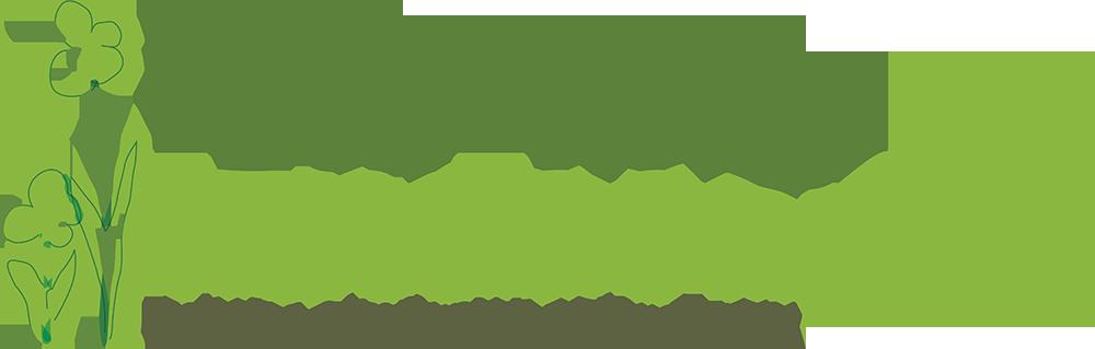 Denver Public Schools Learning Landscapes logo building community through play, Design Concepts