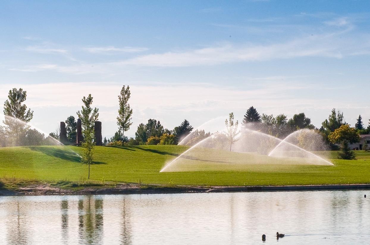 IrrigationDesign