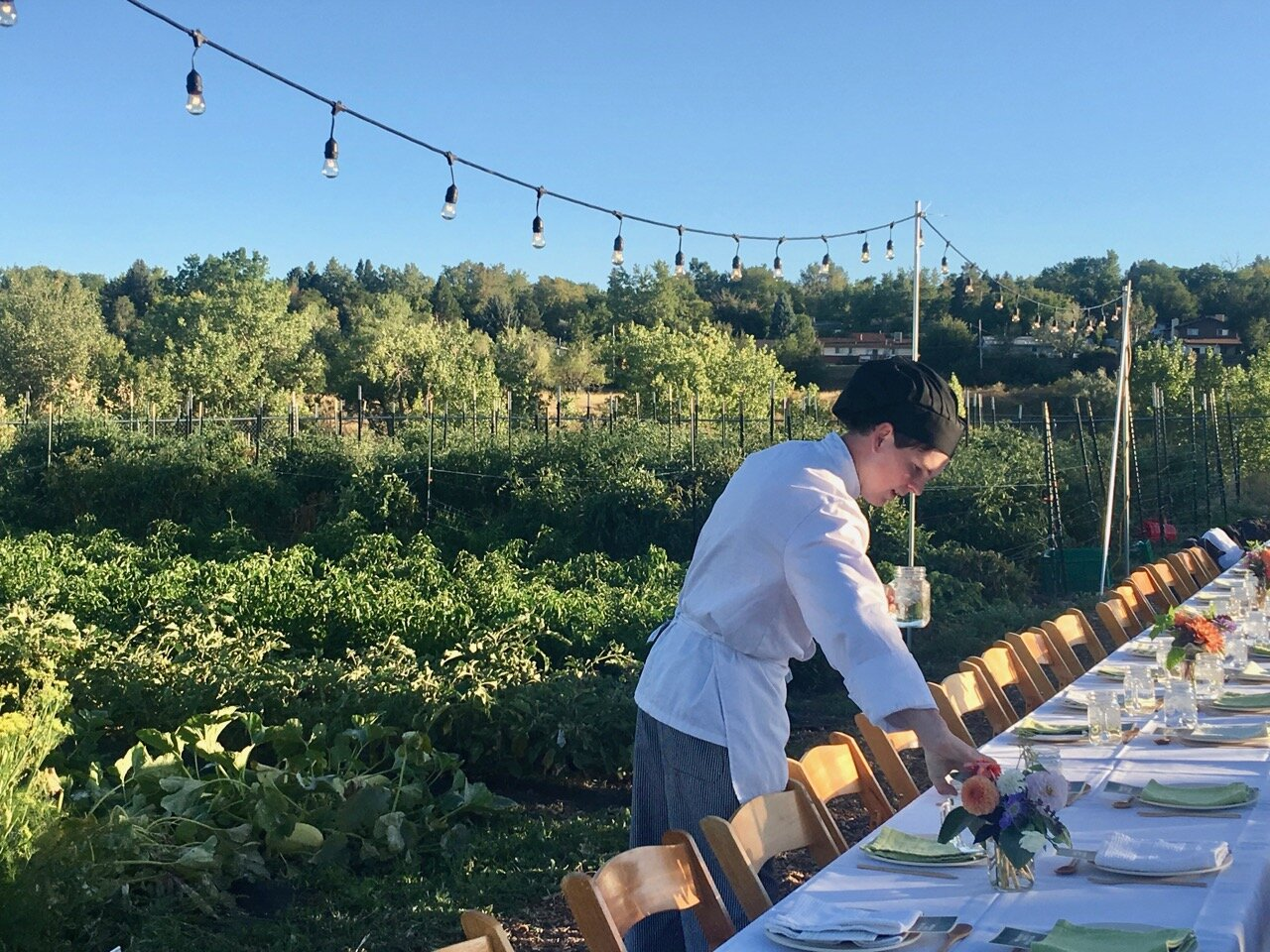 Student chef arranging dinner plates on a long table with white table cloth in a farm field with string lights above