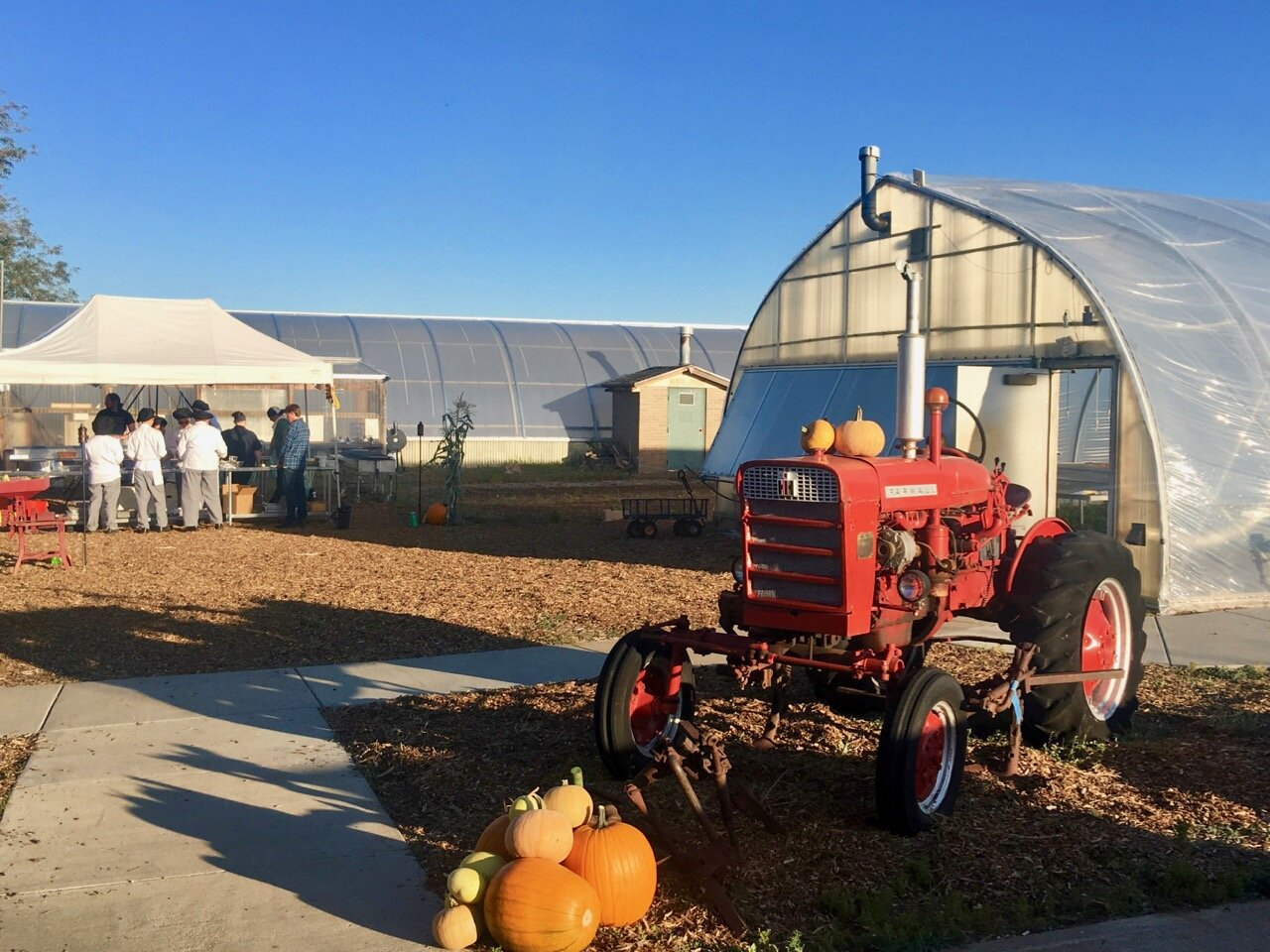 Looking at the farm site with a tractor in the foreground and greenhouse in the background