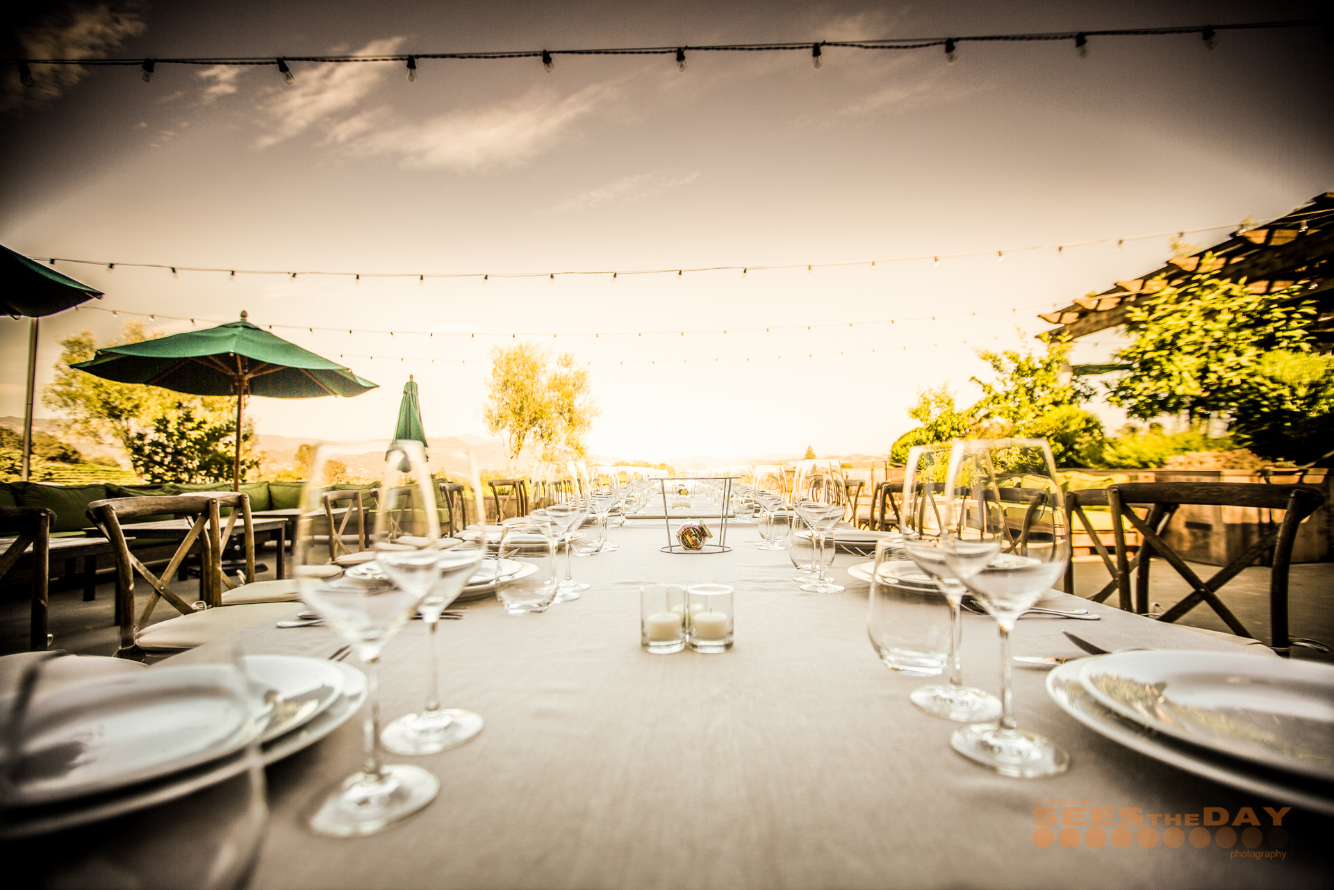 Francis_Ford_Coppola_Winery_Geyserville_Napa_021.jpg