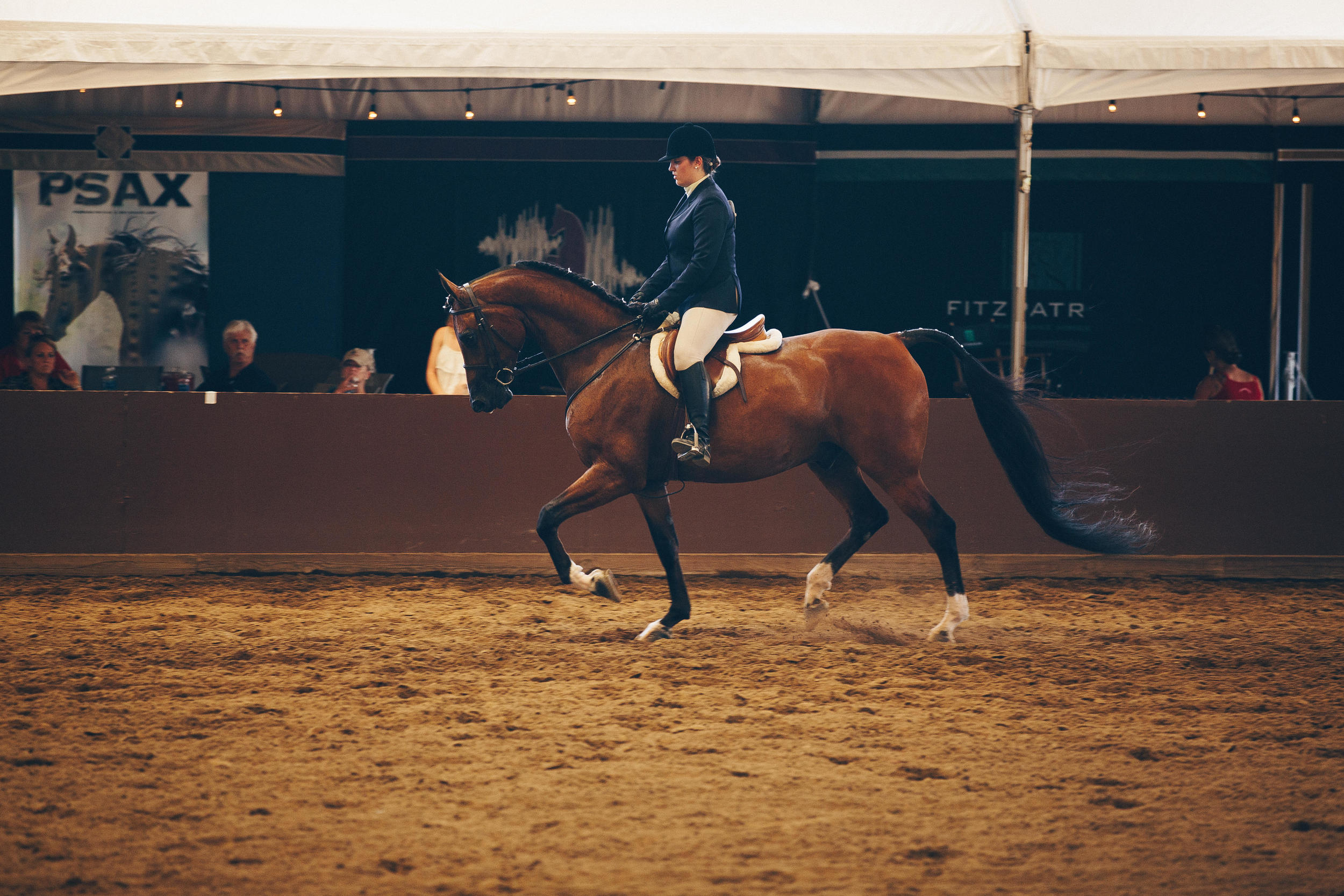 26639_20160713144849_2016_07_13_PaigeWinterHorseShow_SeesTheDay-Edit.jpg