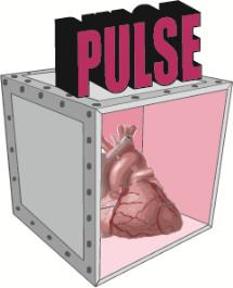 pulse_logo2_1.jpg