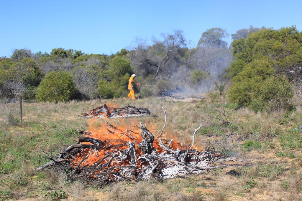 Biodiversity burn at Byne Park early in 2017.