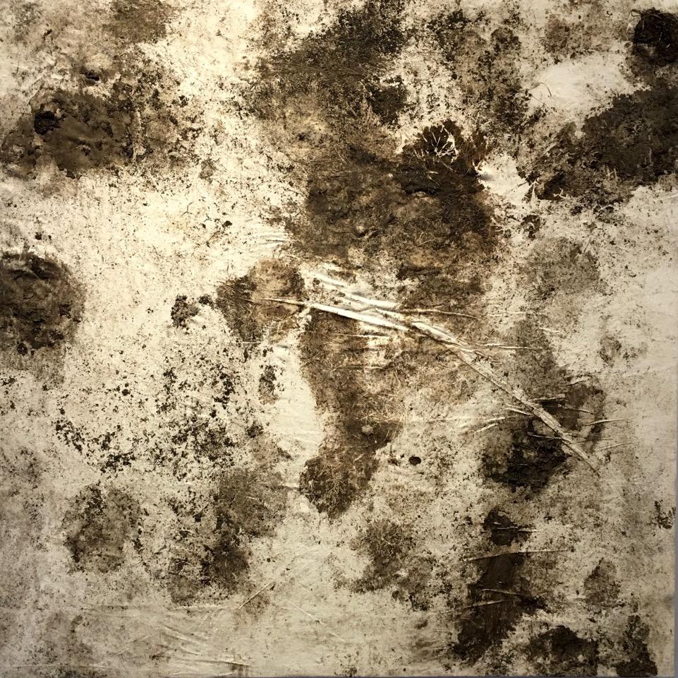 Oxen Print Morning Routine  , earth, canvas, sealant, 5x5', 2015