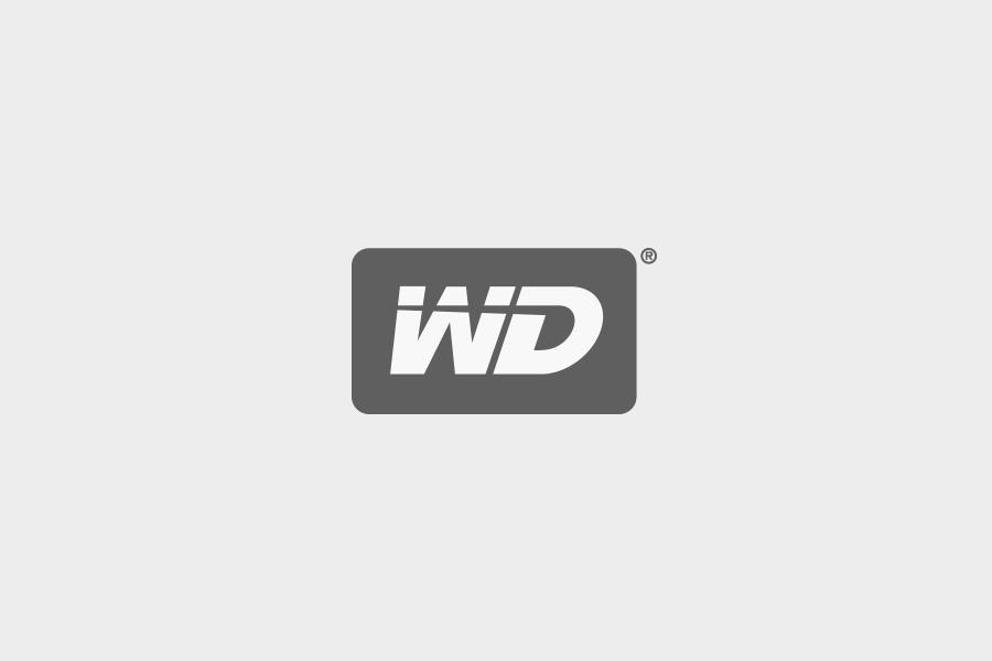 Client_Western-Digital.png