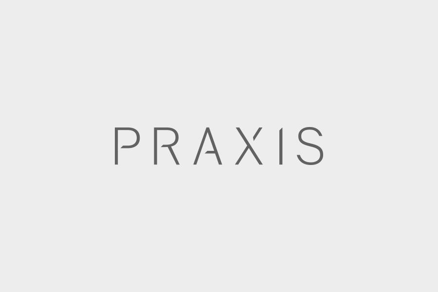 Client_Praxis.png