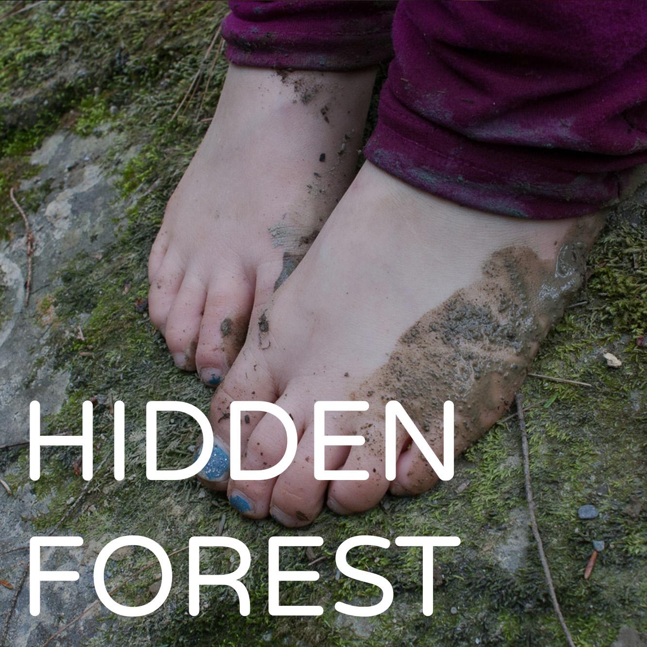 HiddenForest.jpg