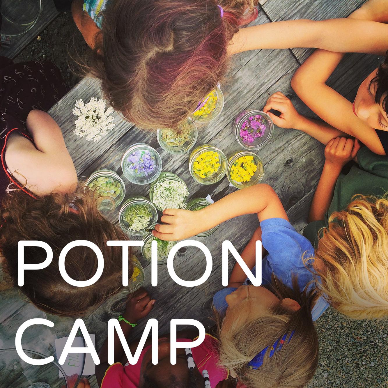 PotionCamp.jpg