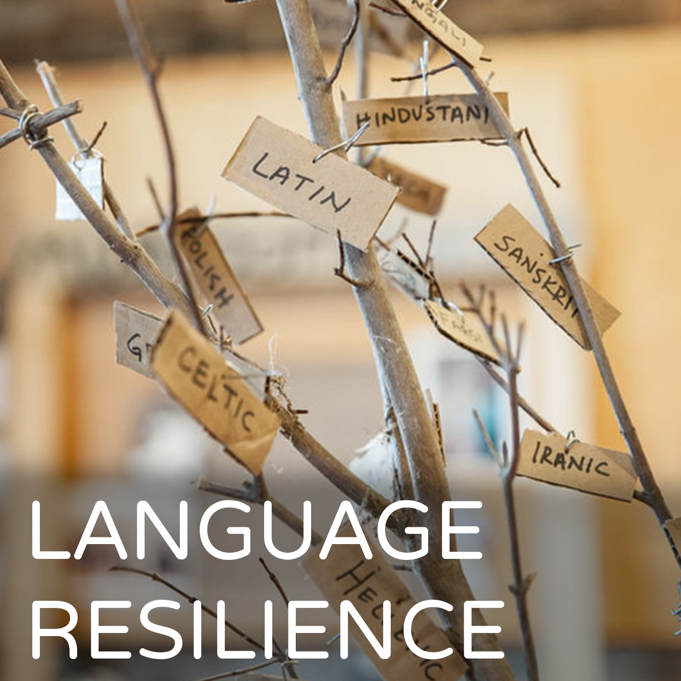 LanguageResilience2.jpg