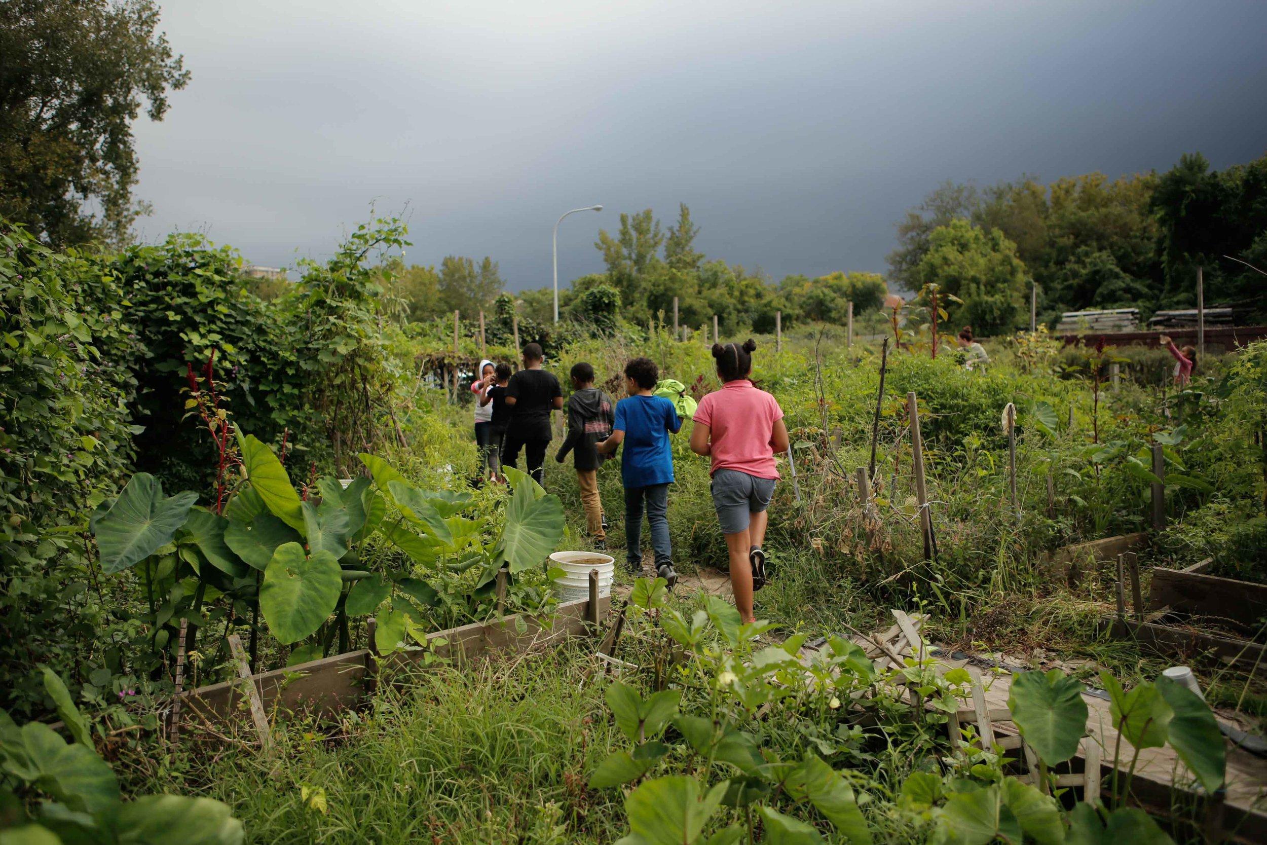 GardenClub-9.jpg