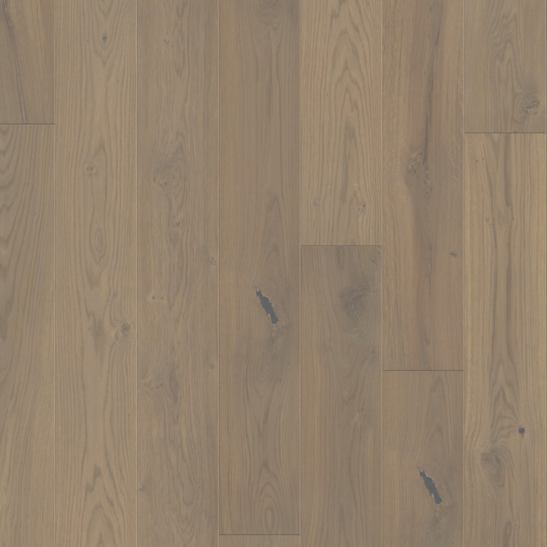 Platinum Grey: Brushed & Oiled (2881)