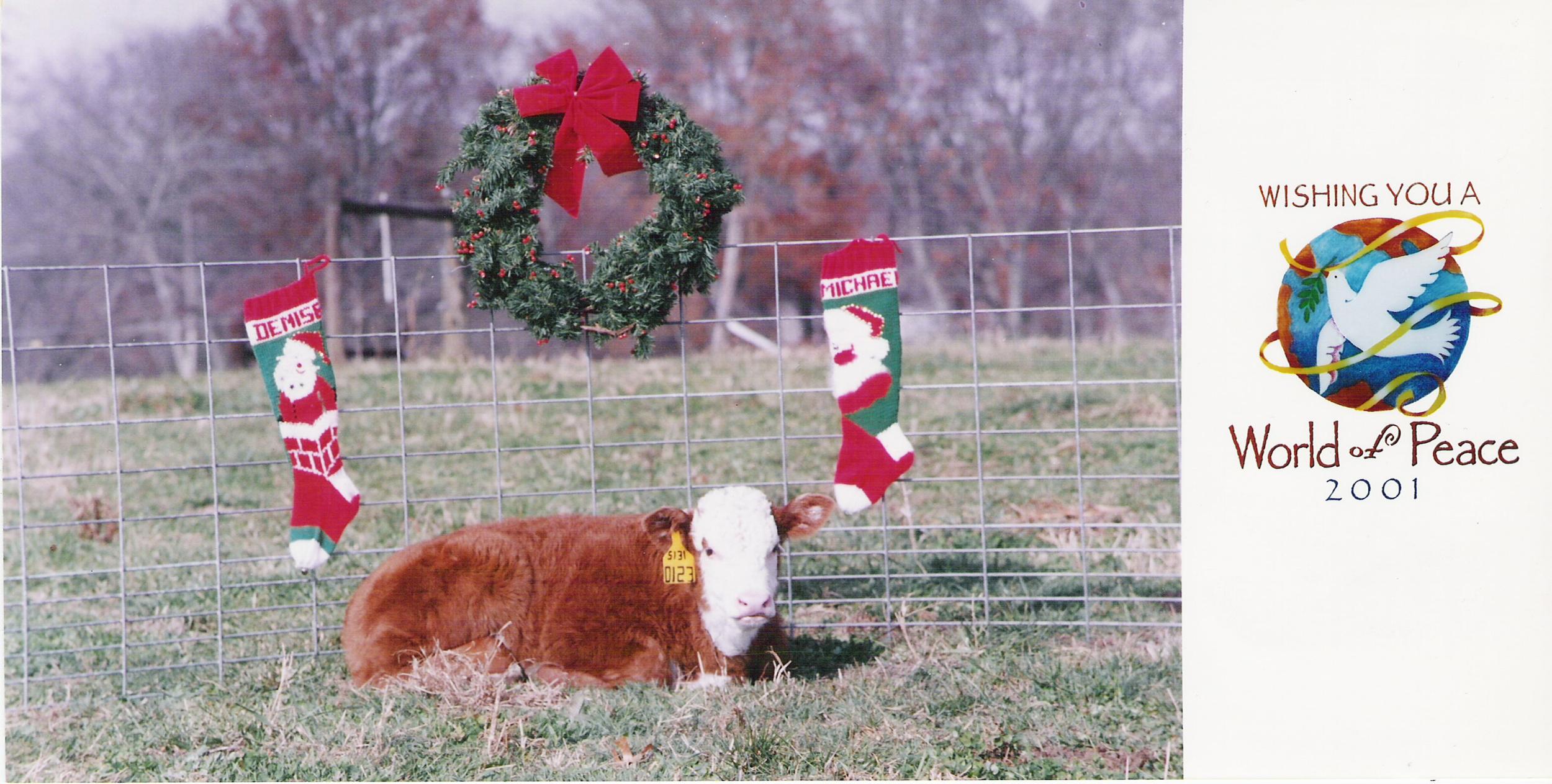 Coley Christmas card 2001
