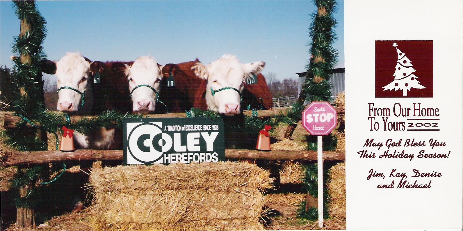 Coley Christmas card 2002