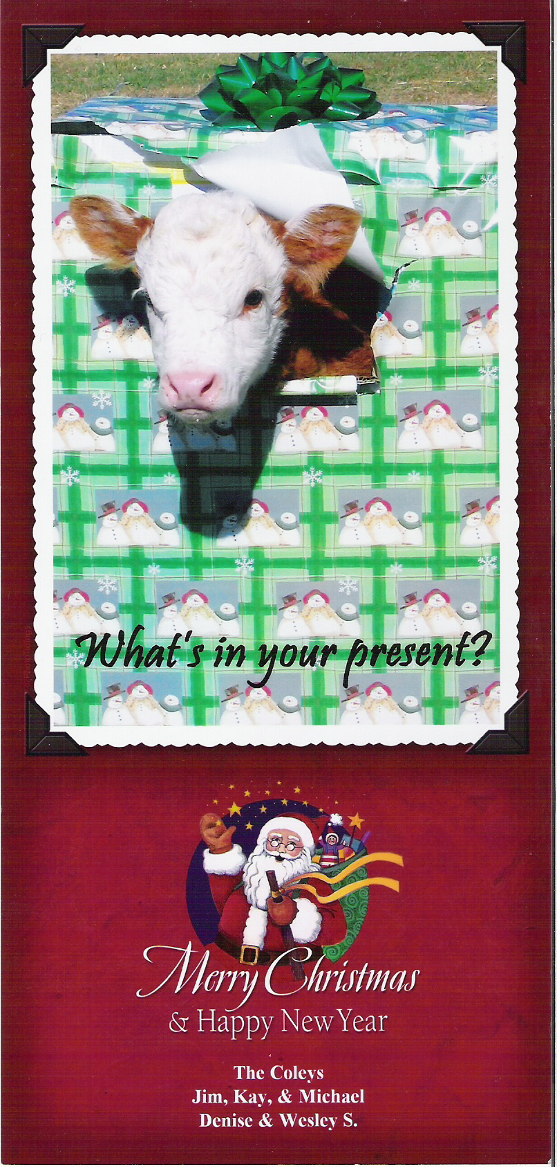 Coley Christmas card 2005