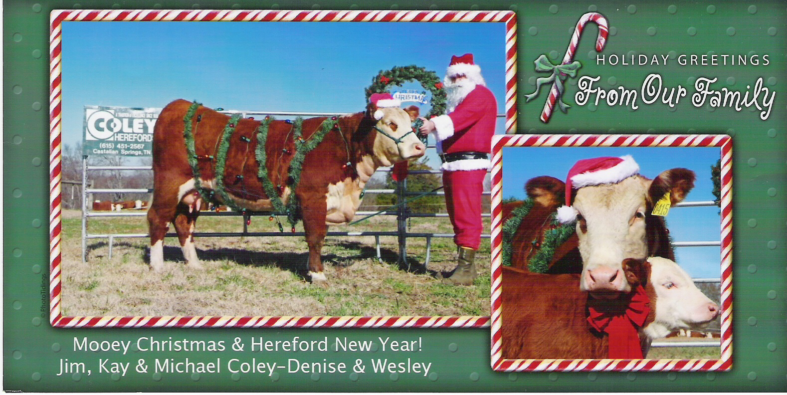 Coley Christmas card 2006