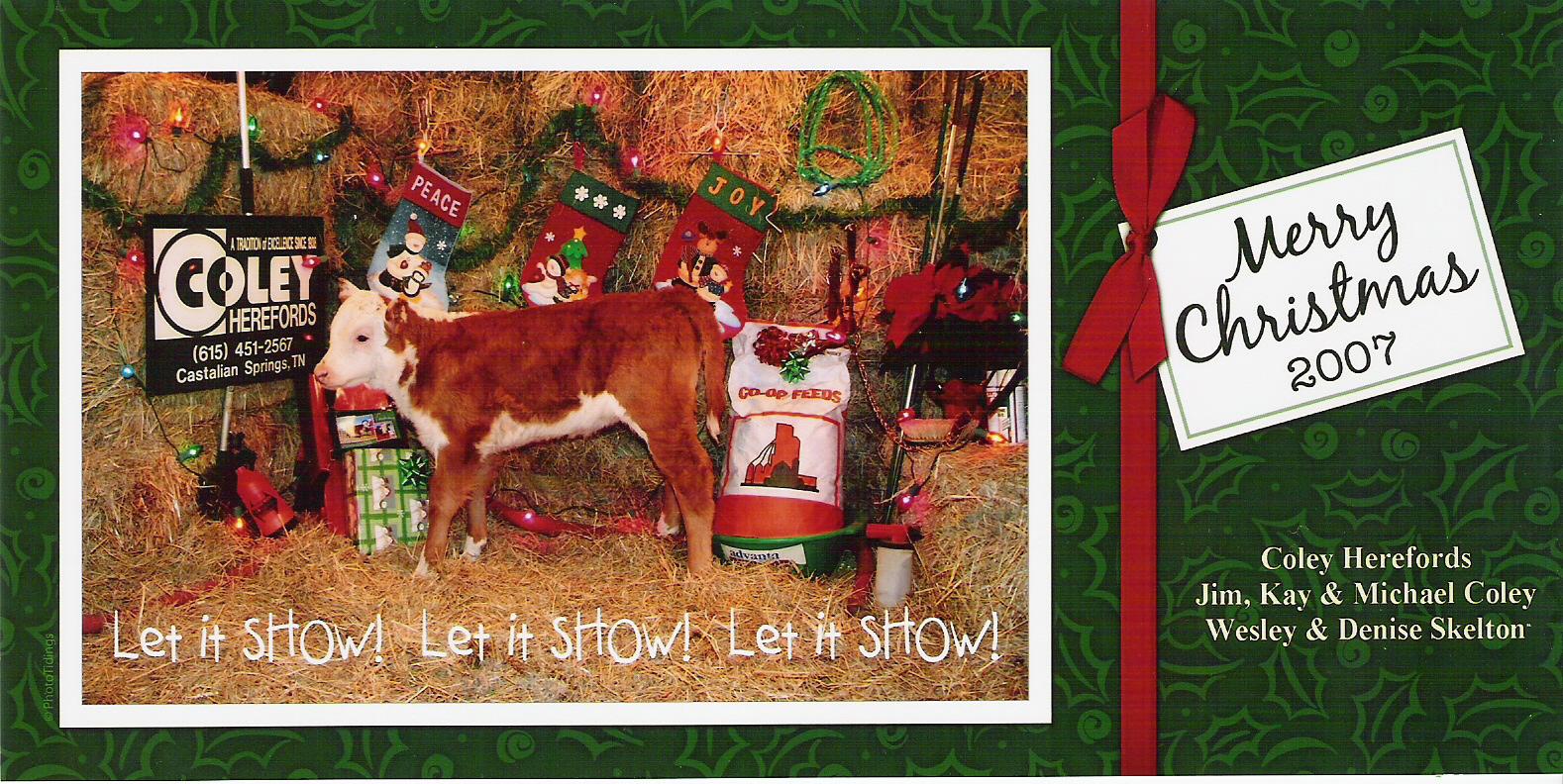 Coley Christmas card 2007