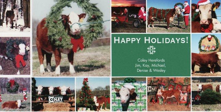 Coley Christmas card 2010