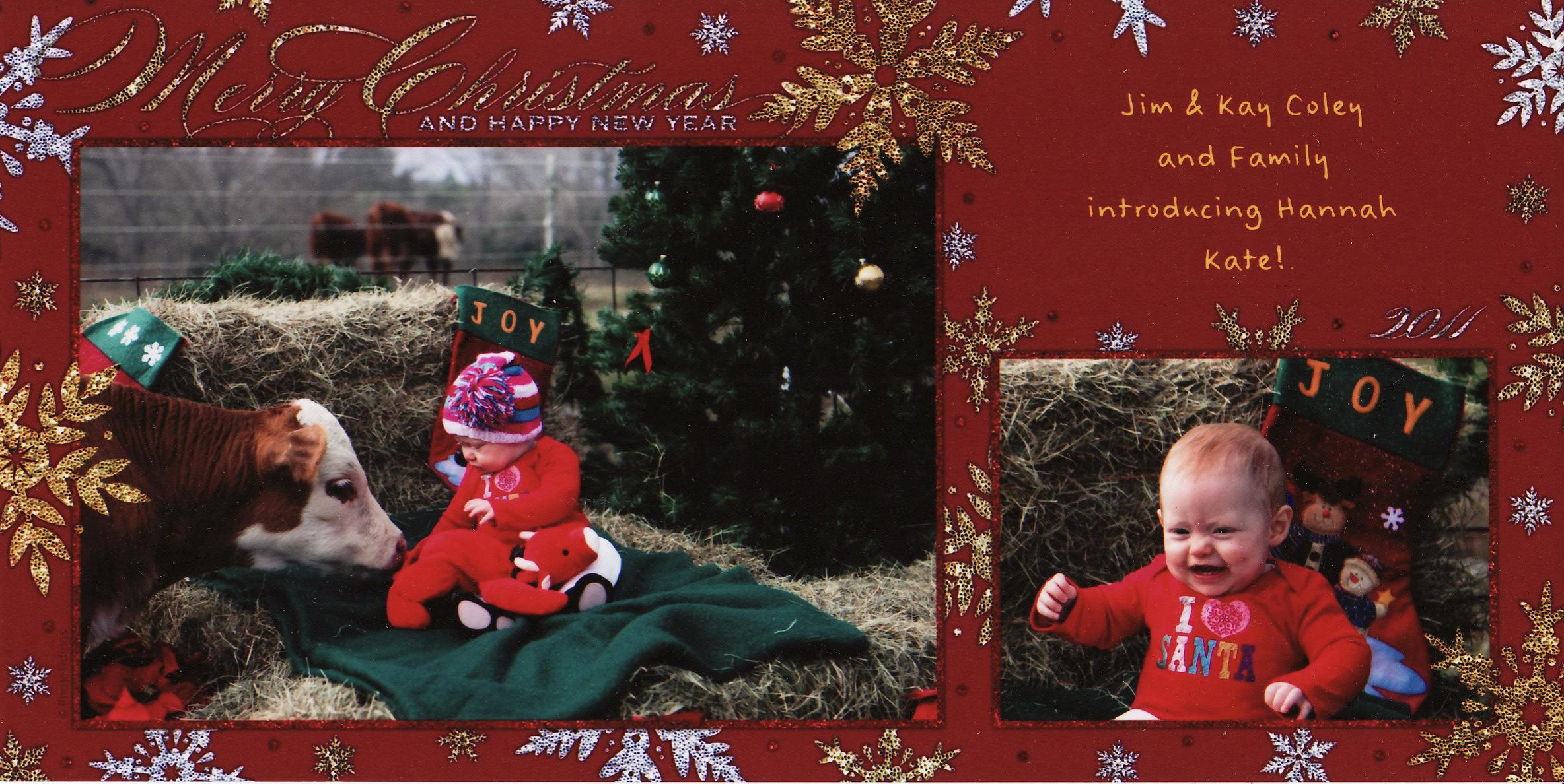 Coley Christmas card 2011