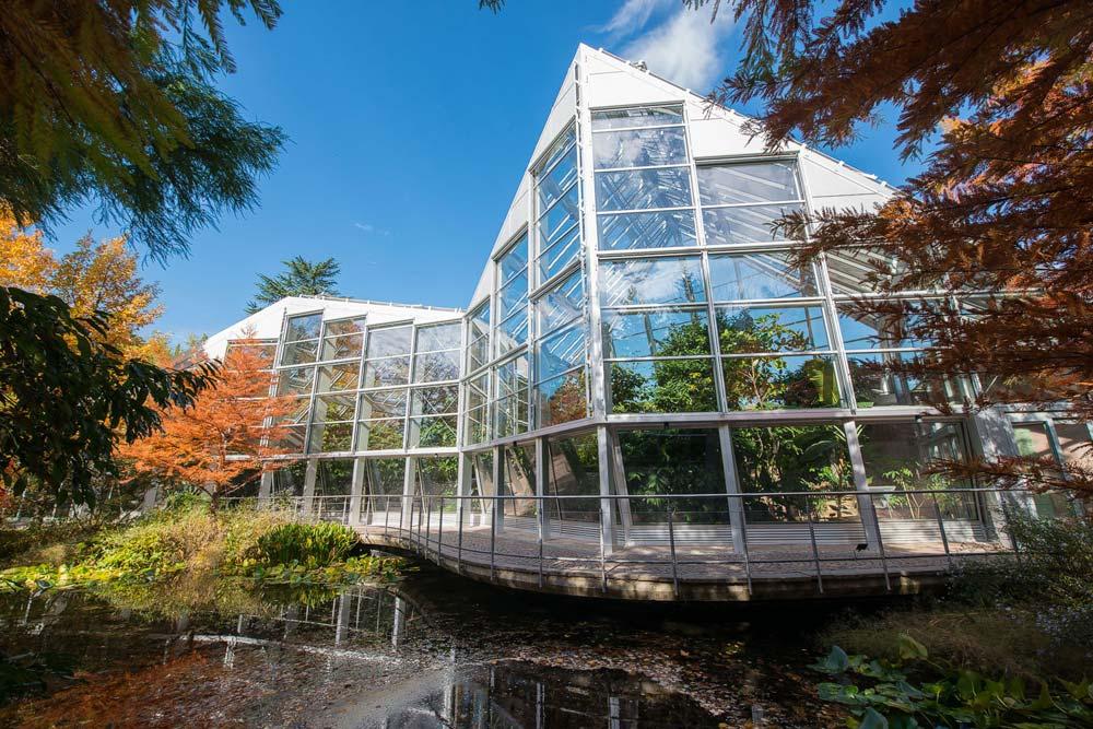 Glashaus-trauttmansdorff.jpg