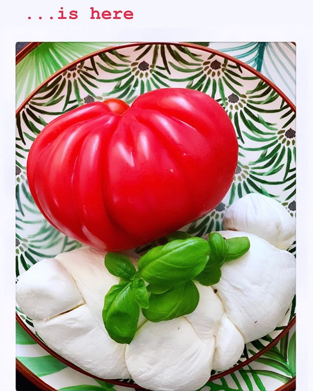 #Tricolore 🍀🥚🍅 ——————— #mozzarelladibufala #pomodoro #basilico #antipasto #fresco #fresh #frisch #yummy #lecker #summer #estate #sommer #meditteraneanfood #thebest #meditteraneandiet #meditteranean #restaurant #food #instafood #foodpic #foodblog #foodporn #italy #italia #colours