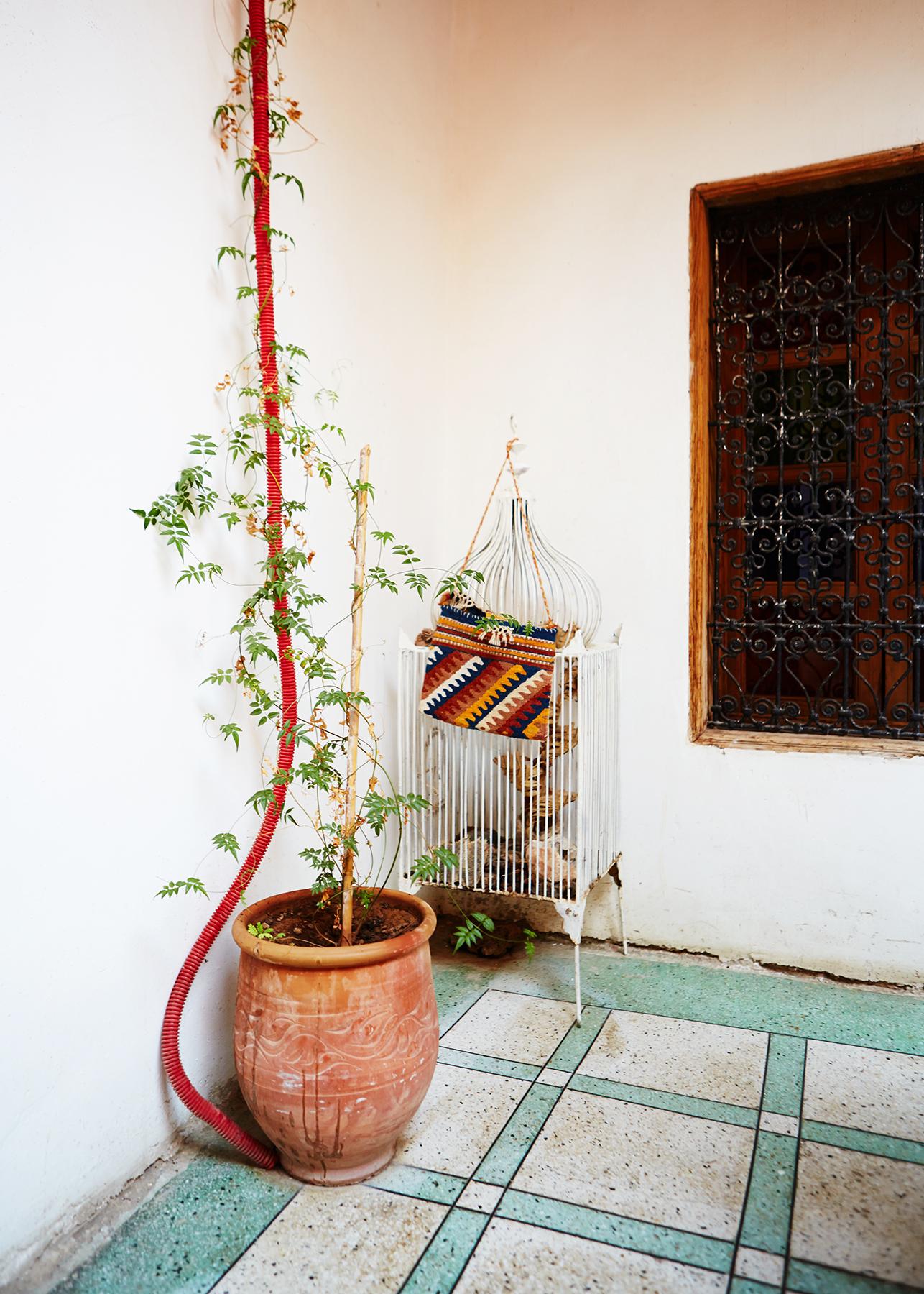 Anna_McKerrow_Morocco_24.jpg