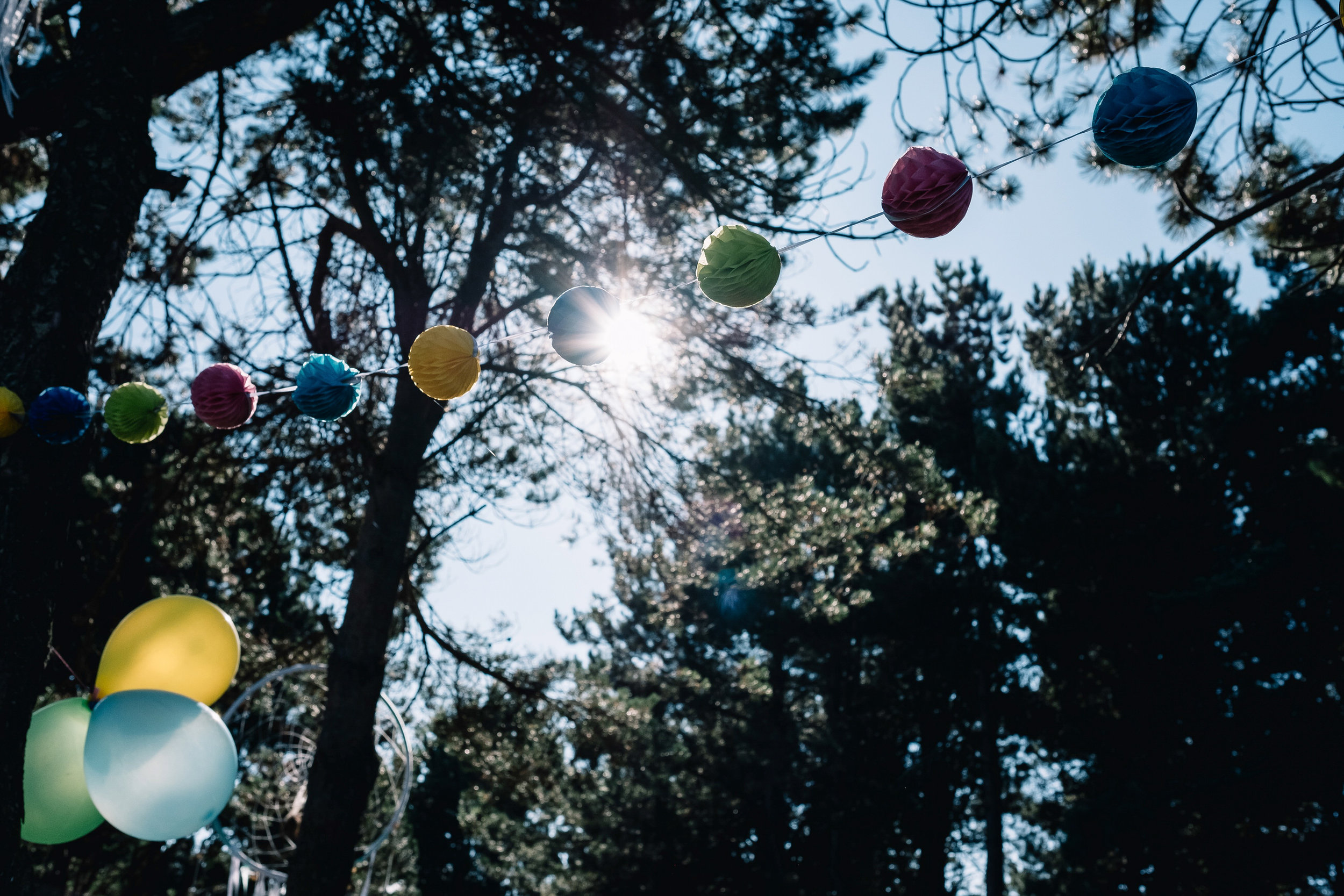 The forrest is decorated with ballons