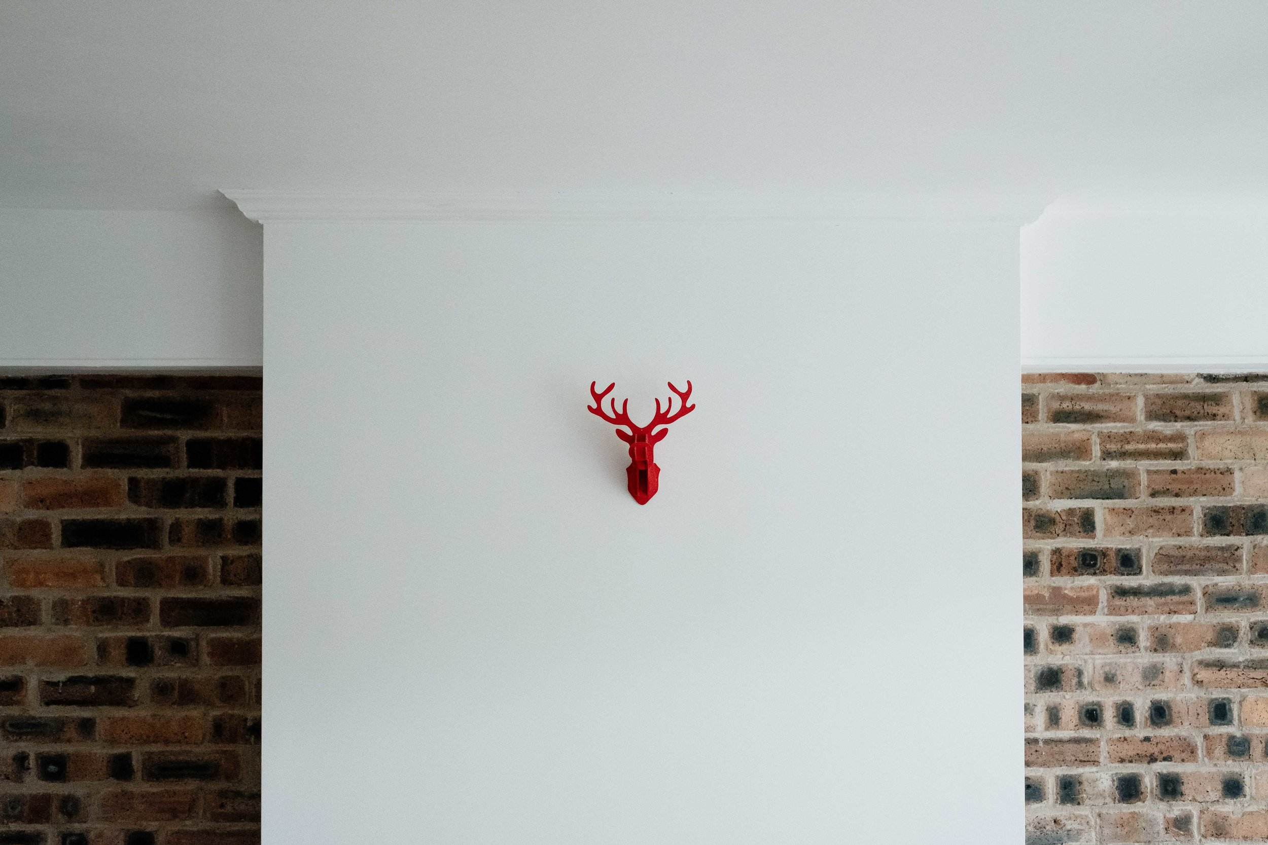 stag head on wall of house