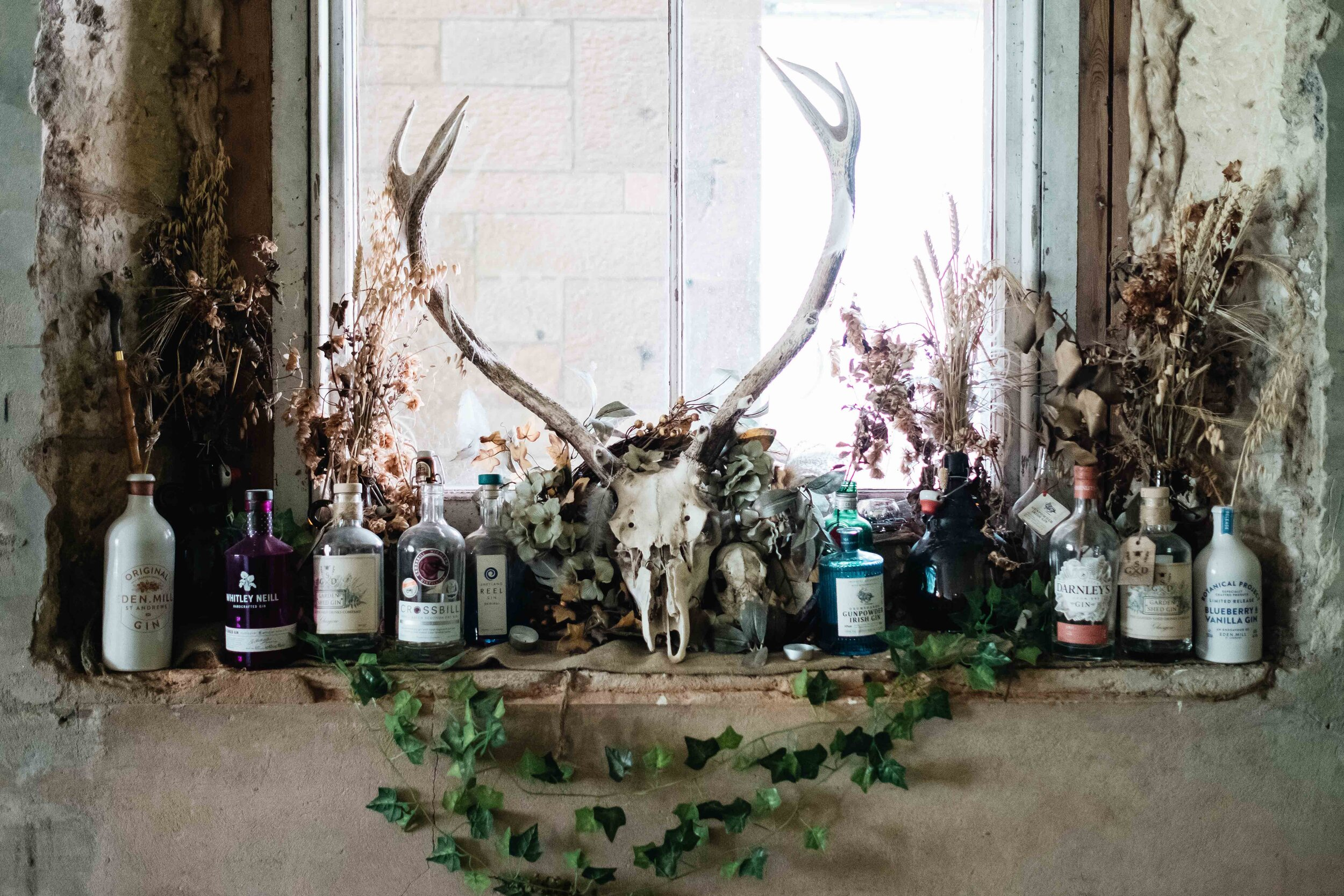 A stag's head is in the middle of the window sill of the Cambolicious bar area and is surrounded by Gin bottles.