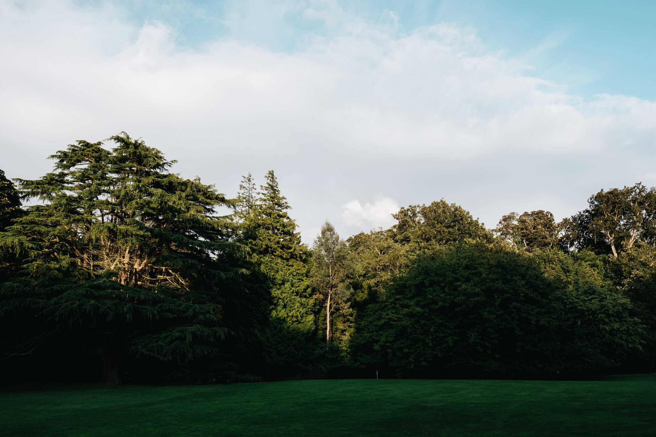 Some trees surrounding the periphery of the main garden of Cambo Country House and Estate