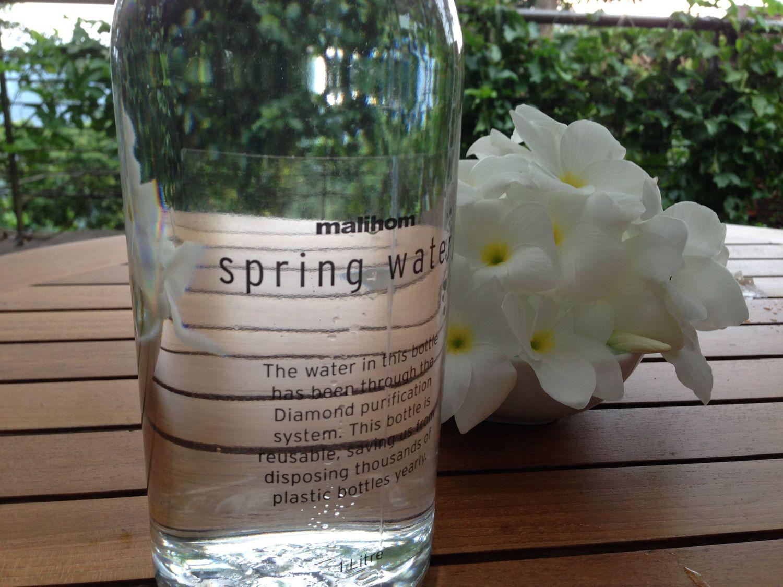 spring+water.jpg