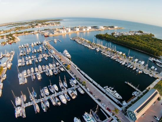 Tortuga's Home Port