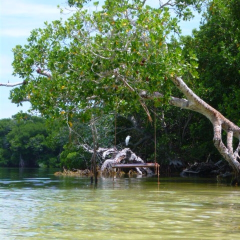 Ultimate Day Out-Island Adventure - 10 hour DAY EXCURSION - customized, private day charter