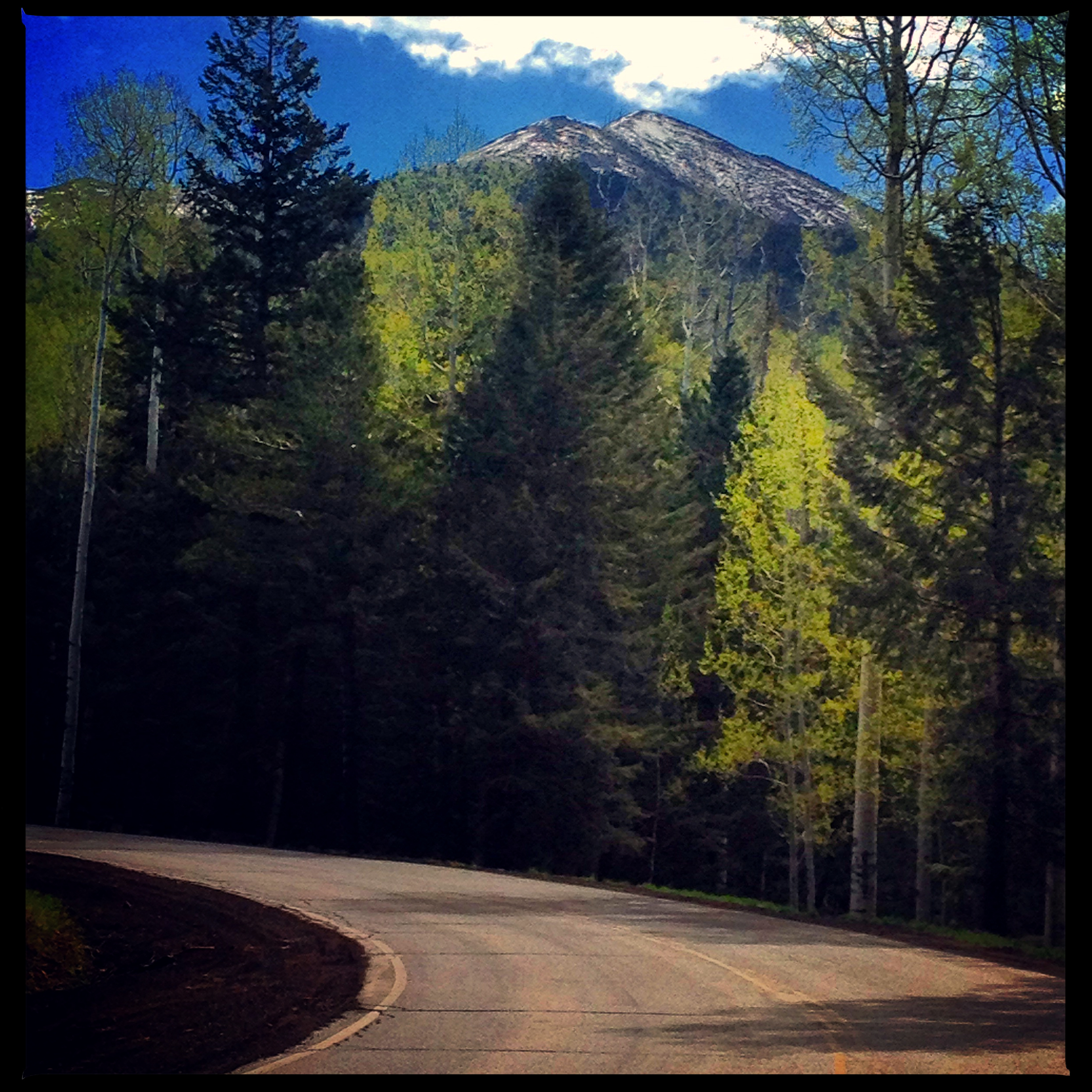 Snowbowl Road, Flagstaff, AZ   June 30, 2015   Well, here it is, the last day of June. I have July and most of August to complete my training program and be ready to roll! Last Saturday, I rode in Flagstaff because it's like a sauna inside an oven in Phoenix. I was scheduled to ride 120 miles. I've never been on a bike for more than 100 miles and that was 10 years ago. For some reason it was not all that daunting. I thought I could do it with little or no trouble if I started early and finished early. You see, Flagstaff is having a bit of a heat wave. The forecast was sunny and high in the low 90's. That's hot for Flagstaff. Real hot. Anyway, up at 3:30 am, on my bike by 5:00 am and 7 hours 30 minutes later, j'ai fini.It was sunny, hot and humid until mile 118 when a monsoon rain fell on me. It cooled down 15 degrees just as I was finishing. Coup de veine!   July 27, 2015   July has come and is nearly gone. What started out as a horrible month has ended up being superb. I won't bore you with all the details but suffice it to say I thought I was going to have to give up the dream of cycling across the country due to illness!But, I survived a week of the flu and have come back stronger and more motivated. I rode 120 miles on Saturday and rode up Snowbowl Road on Sunday, we are close to $40,000 in donations, and the fundraising dinner at Dominick's Steakhouse on August 8, is reaching capacity. Everything is lining up just perfectly.   July 31, 2015   It is the last day of July. I got my kits from Borah Teamwear this week. This is what I'll be wearing across the U.S.