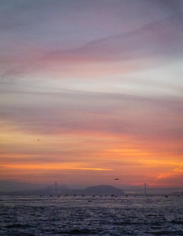 Happily back on the San Francisco Bay, Thursday, Feb. 15, 2013, 7:10 a.m.