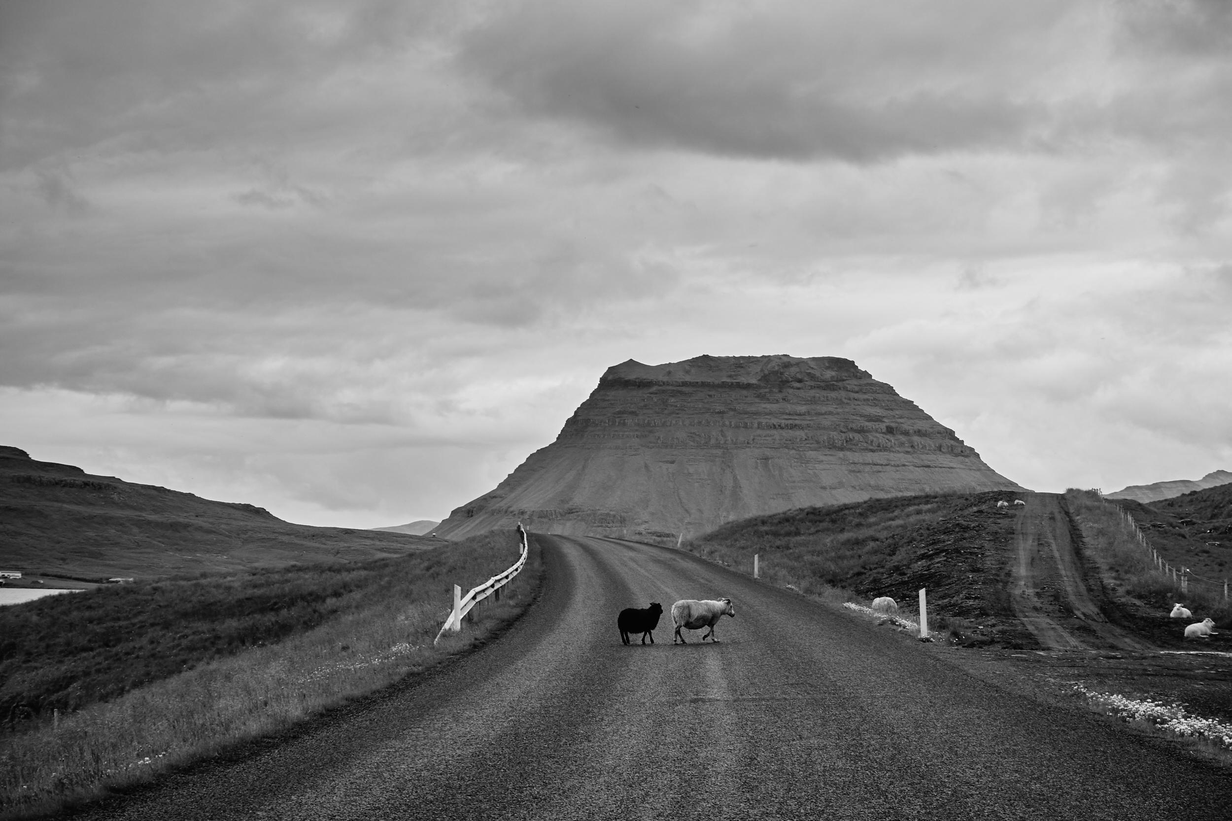 Iceland 2018-0002.jpg