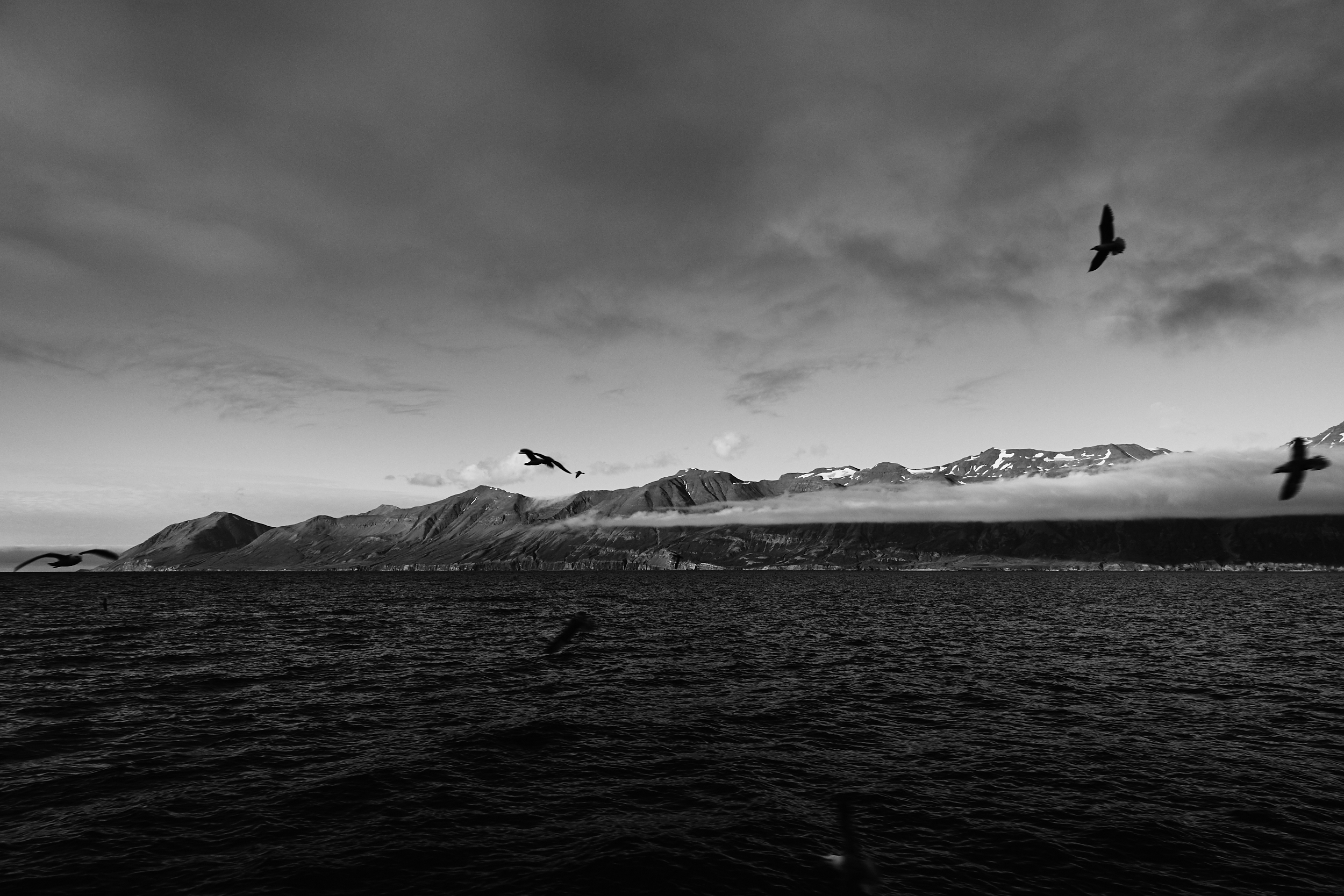 Iceland 2018-0028.jpg