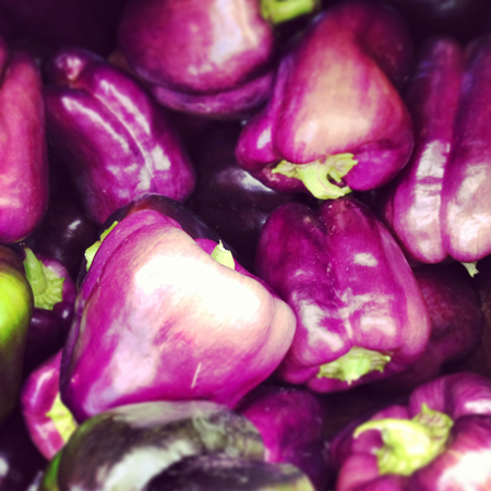 Fresh purple peppers from the farmers market.