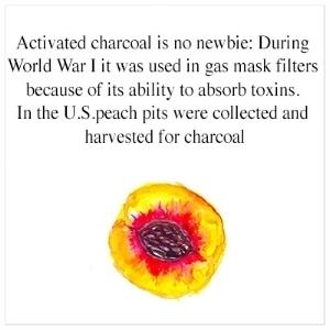 charcoal WWI.jpg