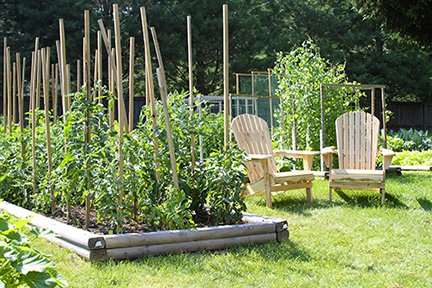 Bernards-garden4.jpg