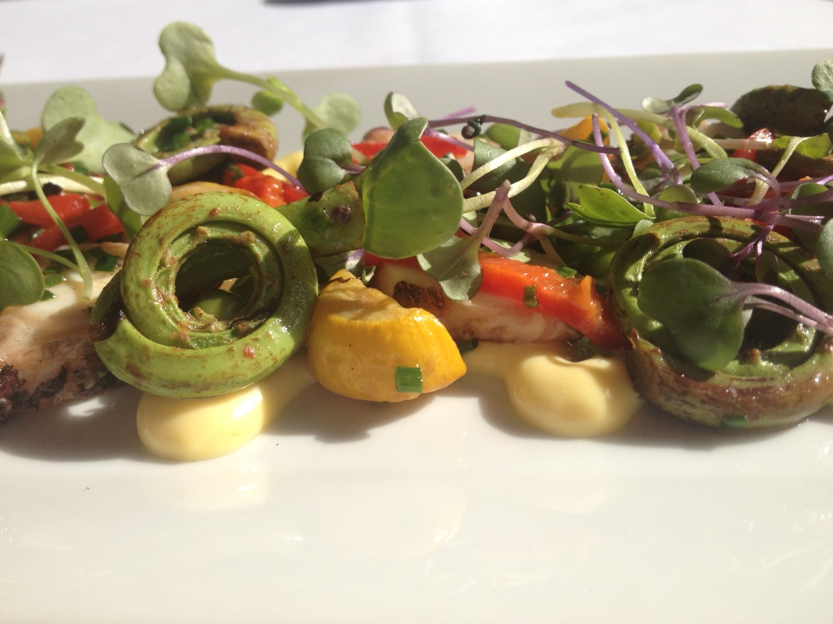 Grilled Octopus with Fiddlehead ferns.JPG