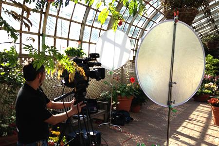 home-greenhouse.jpg