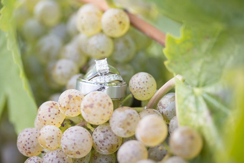 eco-friendly-niagara-on-the-lake-wedding-photographer-st-catharines-hernder-estates-winery.jpg