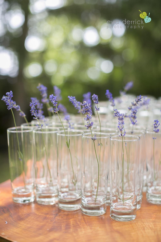 Kurtz-Orchards-Wedding-Niagara-Weddings-Niagara-Photographer-Queenston-Wedding-Photographer-photography-by-Eva-Derrick-Photography-025.jpg
