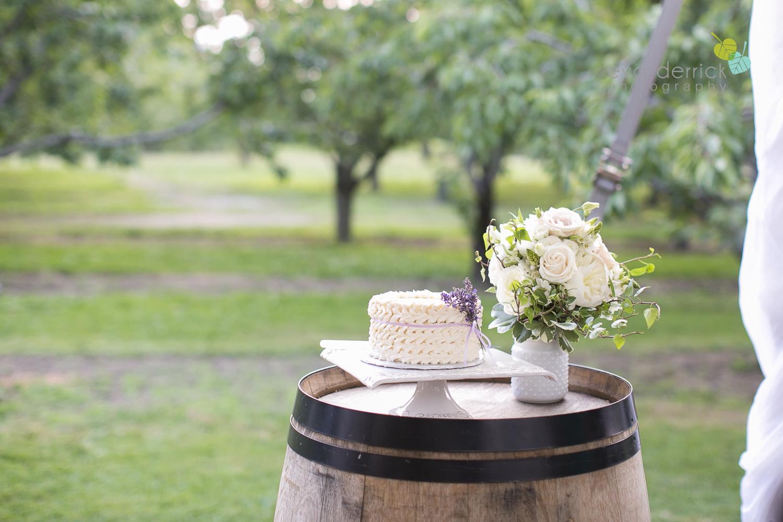 Kurtz-Orchards-Wedding-Niagara-Weddings-Niagara-Photographer-Queenston-Wedding-Photographer-photography-by-Eva-Derrick-Photography-065.jpg