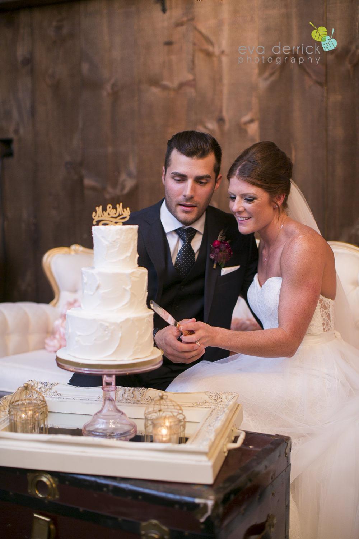 Hamilton-Wedding-Photographer-Anne-an-Co-Niagara-Weddings-Niagara-Elopement-photography-by-Eva-Derrick-Photography-047.JPG