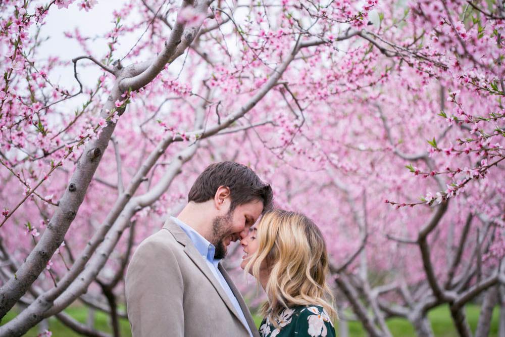 Cherry-blossom-engagement-session-niagara-on-the-lake-spring-photo-by-philosophy-studios-eva-derrick-photography-021.jpg
