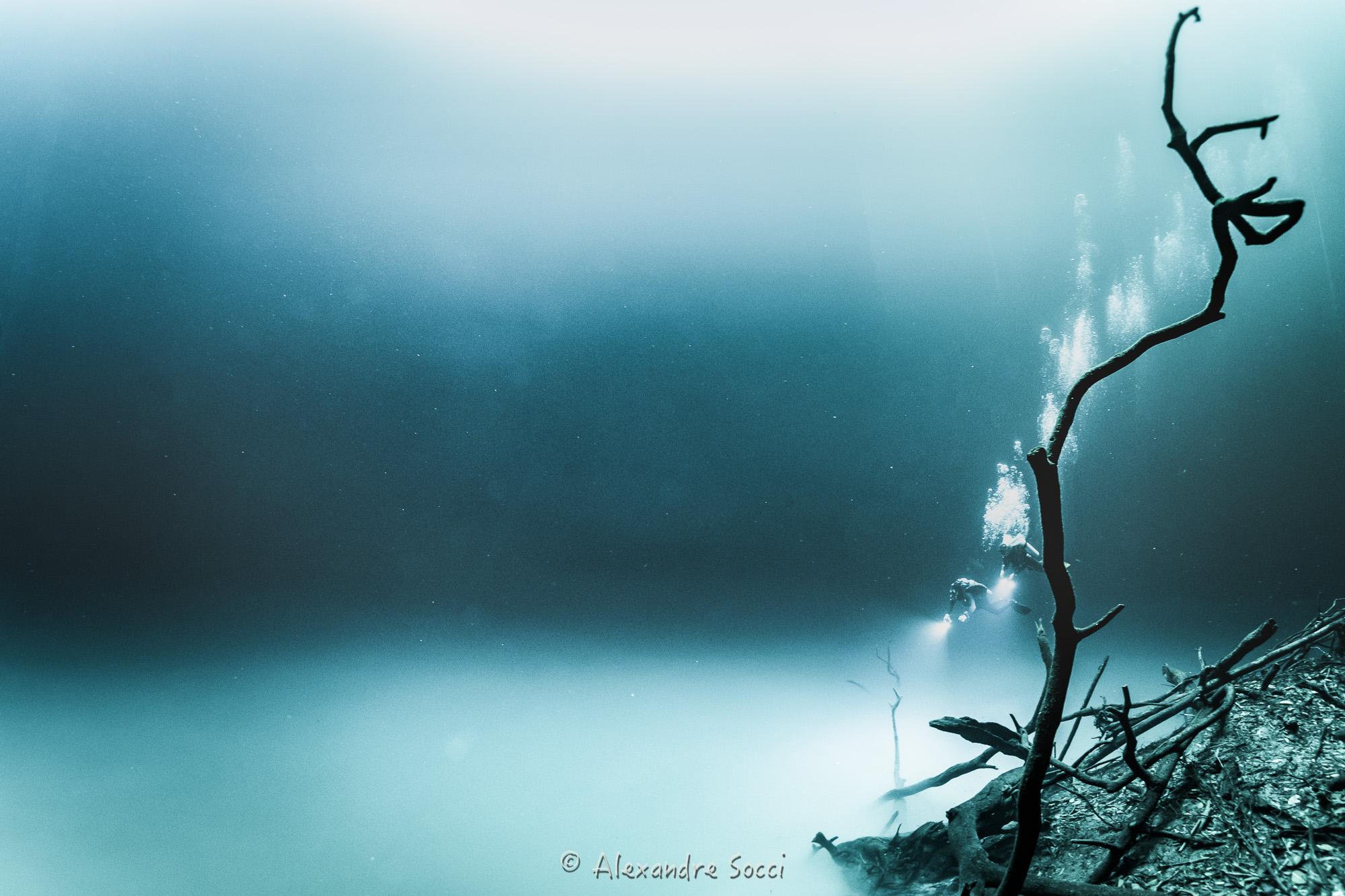 ©AlexandreSocci--2.jpg