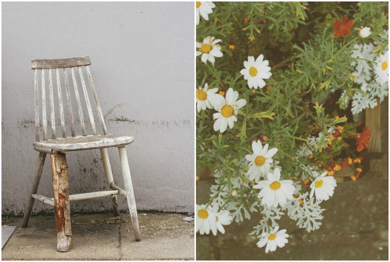 chair flower 2.jpg