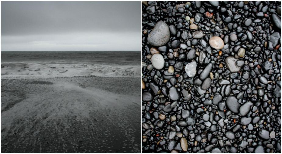 beach Collage.jpg